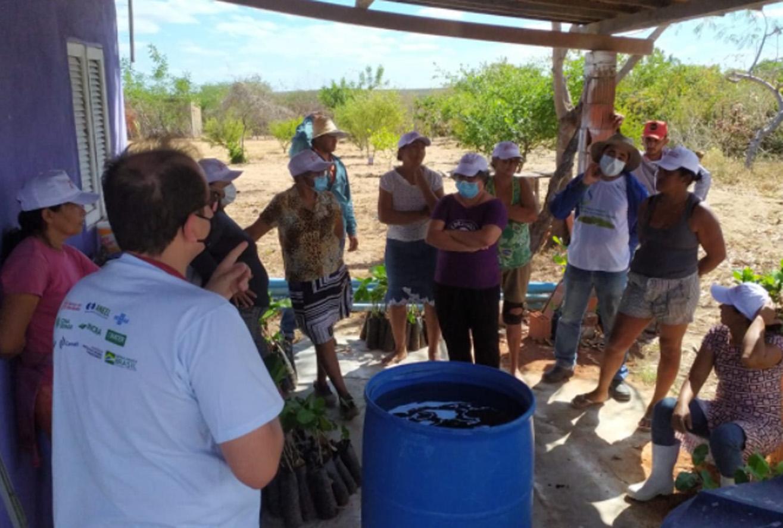 Dia de campo planta mais de 250 mudas de caju na comunidade Mulunguzinho