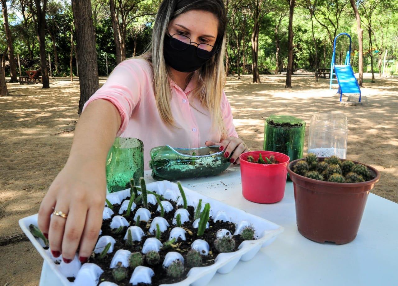 Oficina ensina na prática cultivo e manejo de cactos