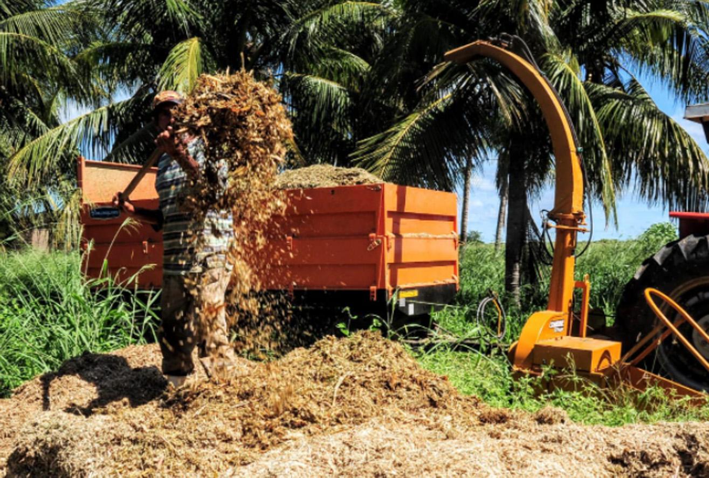 Mossoró Forragem incentiva produção de silagem e feno para agricultura familiar