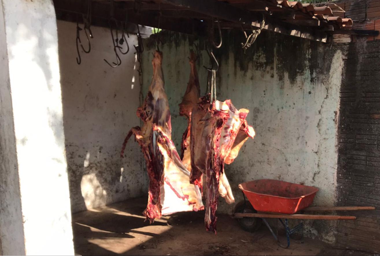 Fiscalização apreende meia tonelada de carne imprópria para consumo