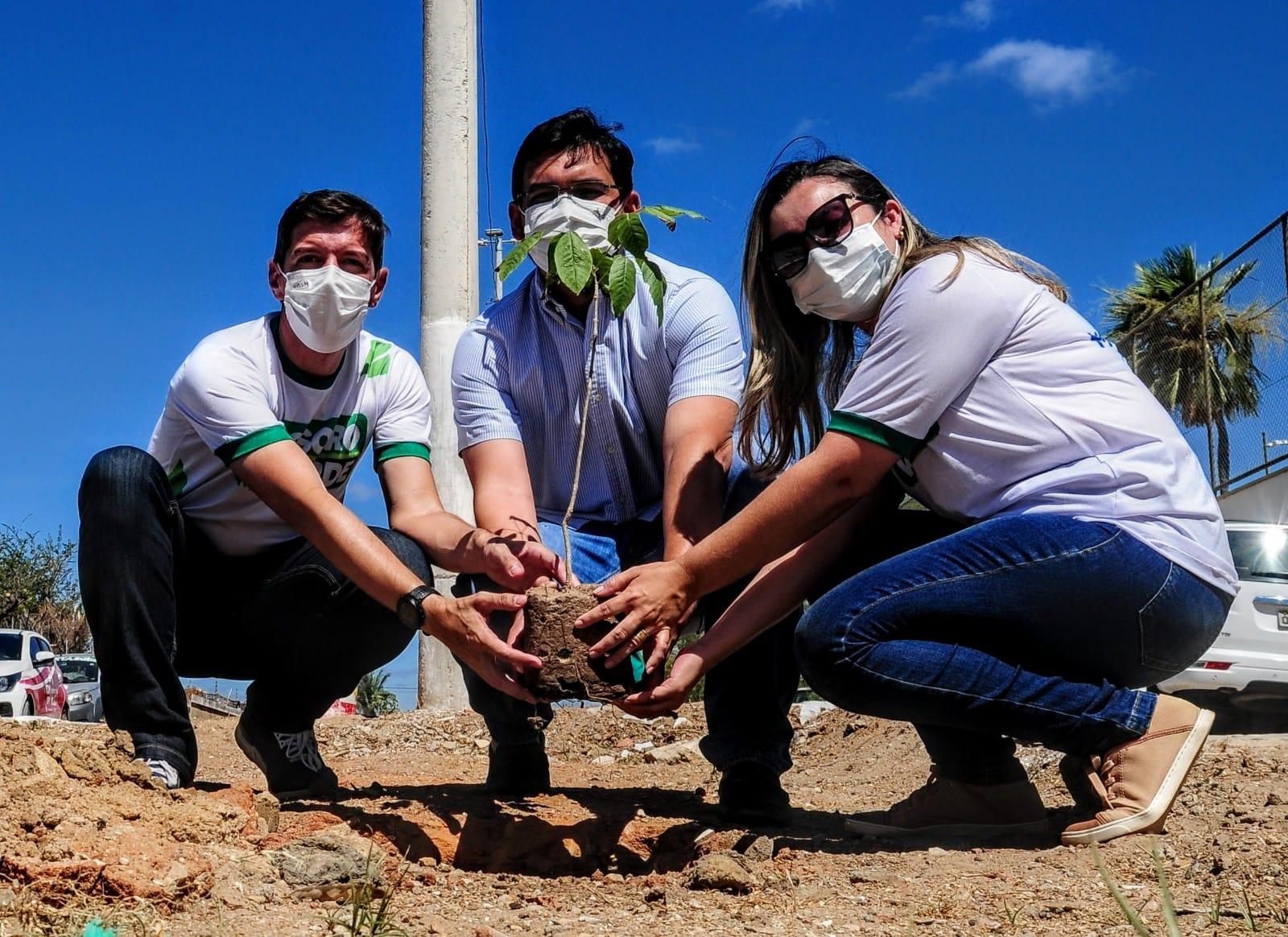 """""""Mossoró Verde"""": Prefeitura planta mudas em canteiros do bairro Barrocas"""
