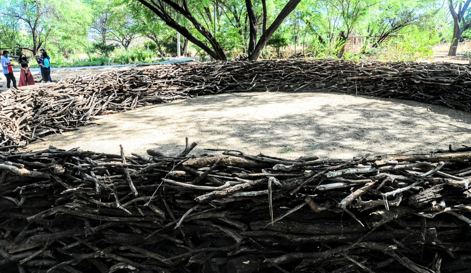 Parque Municipal oferta ao público diferentes espaços paisagísticos
