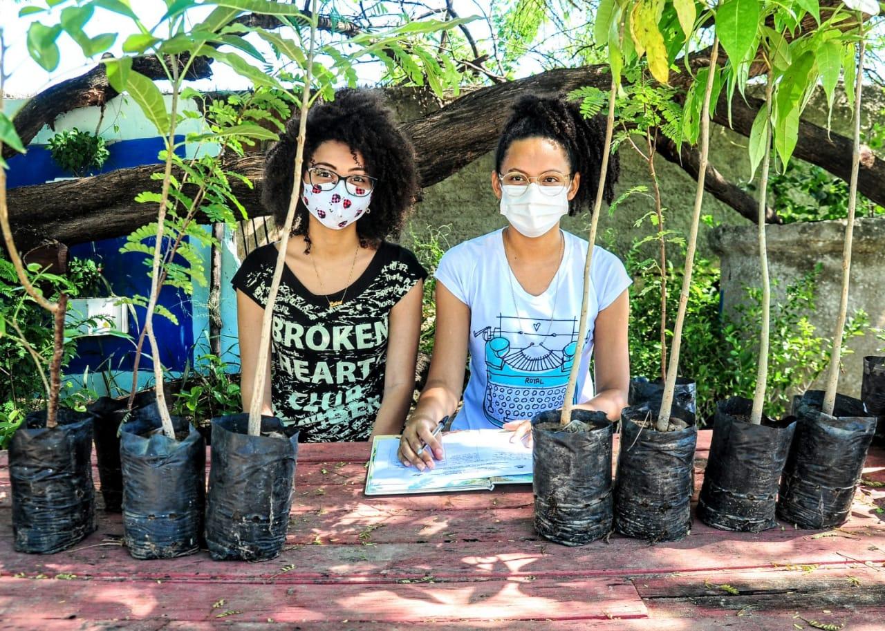 Mudas são distribuídas à população na Semana de Meio Ambiente