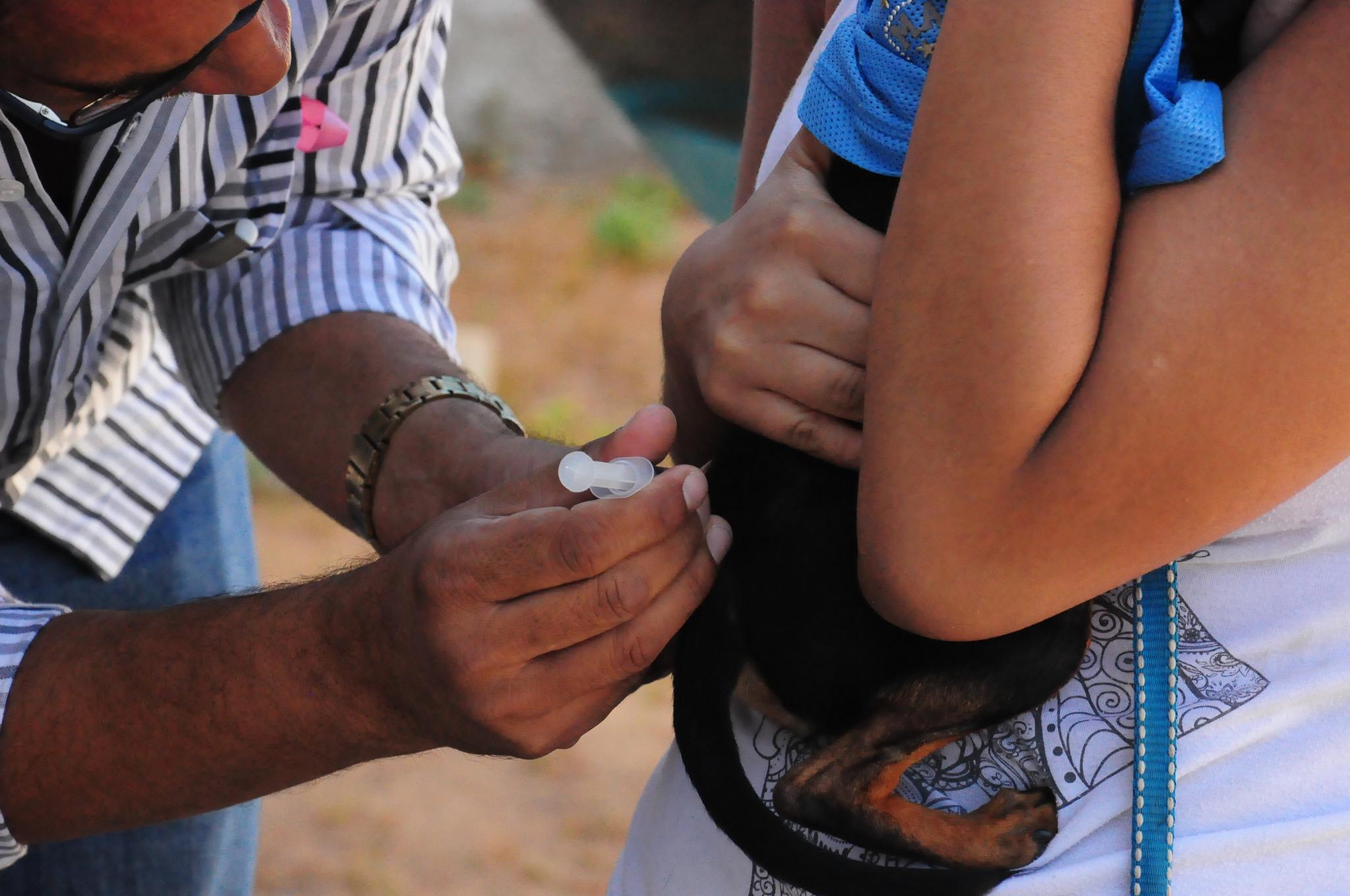 Município atinge meta no dia D de vacinação Antirrábica