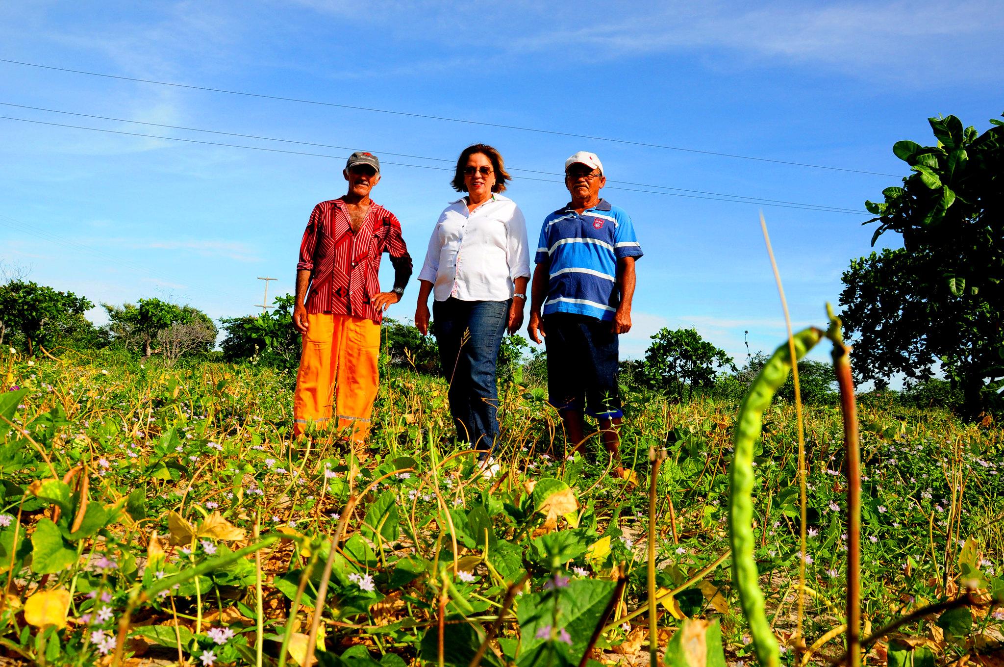 Agricultores familiares já se beneficiam com primeiras colheitas